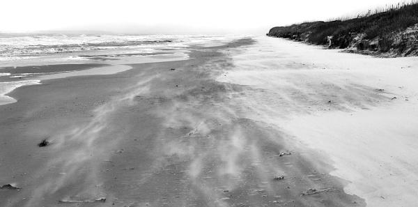 Photo By: D. Austin Jekyll Island, Jan. 2014